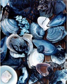 Swatiness-blue Aesthetic Inspiration 16
