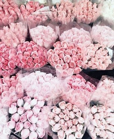 Swatiness_Pink Aesthetic Inspiration 15