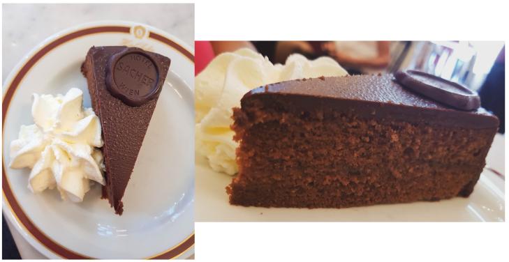 Swatiness- Vienna Sacher Torte 3